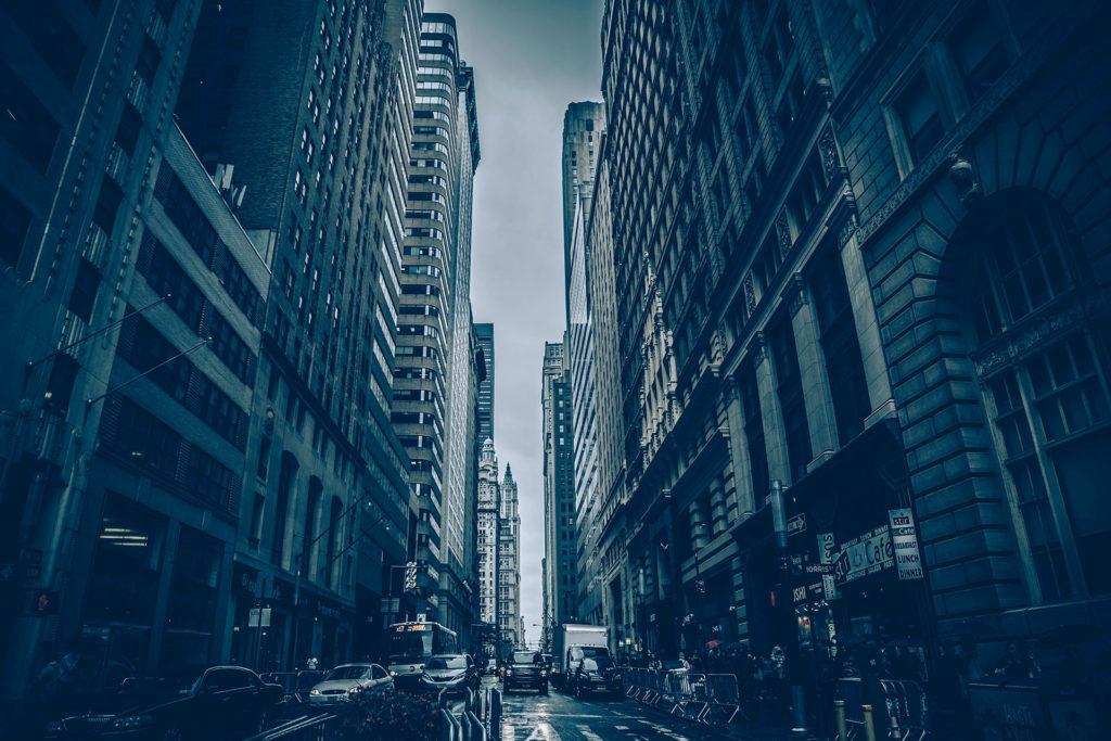 The city.
